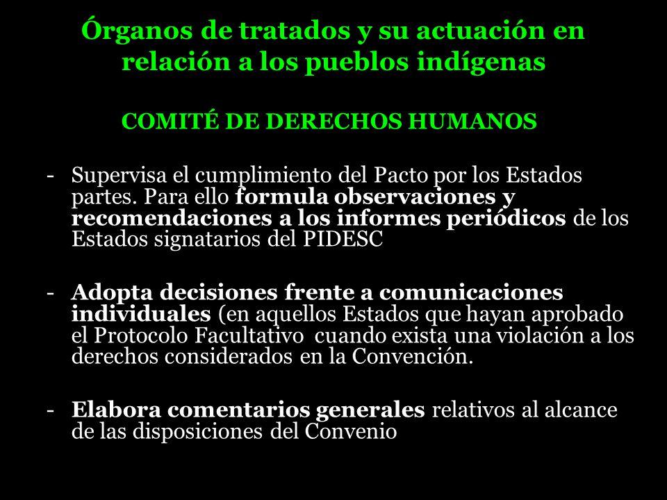 Órganos de tratados y su actuación en relación a los pueblos indígenas COMITÉ DE DERECHOS HUMANOS - Supervisa el cumplimiento del Pacto por los Estado