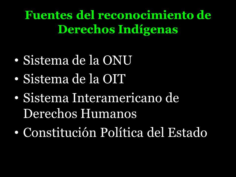 Fuentes del reconocimiento de Derechos Indígenas Sistema de la ONU Sistema de la OIT Sistema Interamericano de Derechos Humanos Constitución Política