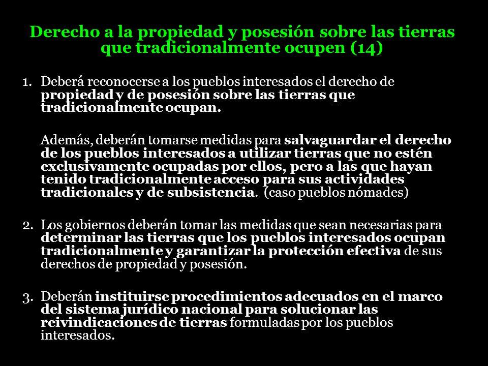 Derecho a la propiedad y posesión sobre las tierras que tradicionalmente ocupen (14) 1. Deberá reconocerse a los pueblos interesados el derecho de pro