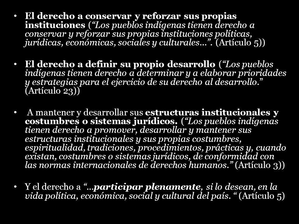 El derecho a conservar y reforzar sus propias instituciones (Los pueblos indígenas tienen derecho a conservar y reforzar sus propias instituciones pol