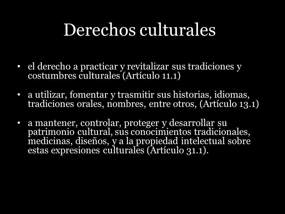 Derechos culturales el derecho a practicar y revitalizar sus tradiciones y costumbres culturales (Artículo 11.1) a utilizar, fomentar y trasmitir sus
