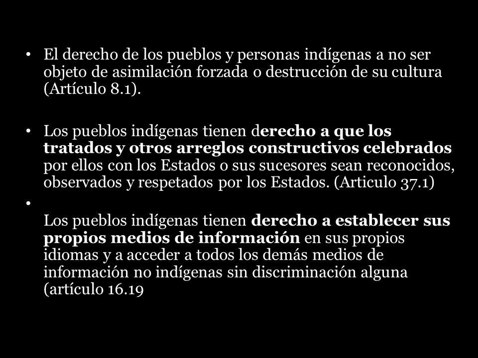 El derecho de los pueblos y personas indígenas a no ser objeto de asimilación forzada o destrucción de su cultura (Artículo 8.1). Los pueblos indígena
