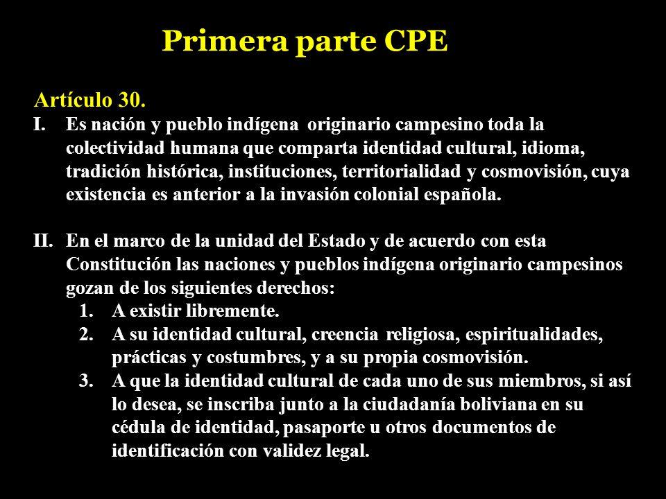 Artículo 30. I. Es nación y pueblo indígena originario campesino toda la colectividad humana que comparta identidad cultural, idioma, tradición histór