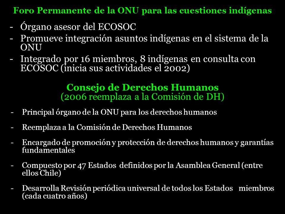 - Órgano asesor del ECOSOC - Promueve integración asuntos indígenas en el sistema de la ONU - Integrado por 16 miembros, 8 indígenas en consulta con E