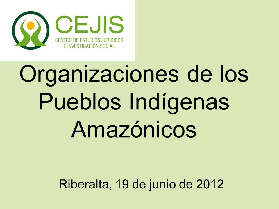 Organizaciones de los Pueblos Indígenas Amazónicos Riberalta, 19 de junio de 2012