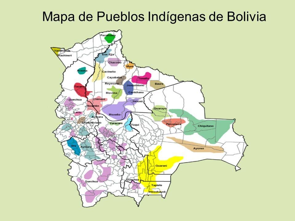 CIDOB Confederación de Pueblos Indígenas de Bolivia FUNDACIÓN CIDOB, representante nacional del movimiento indígena de Bolivia, se fundó formalmente en octubre de 1982, en Santa Cruz de la Sierra, con la participación de representantes de cuatro pueblos indígenas del Oriente Boliviano: Guaraní-izoceños, Chiquitanos, Ayoreos y Guarayos.