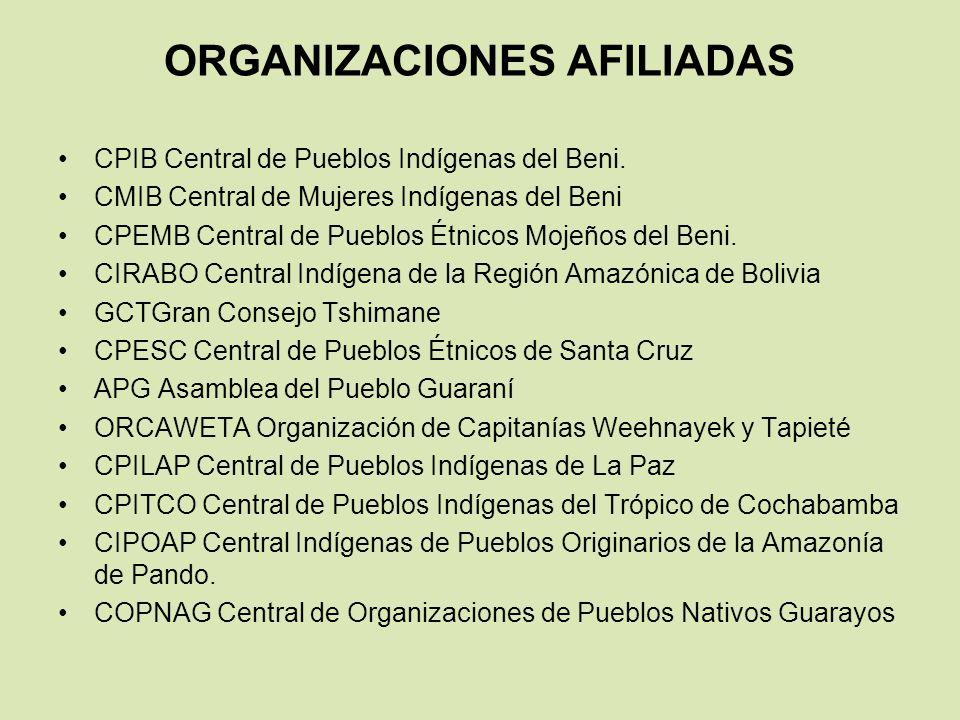 Retos del movimiento indígena amazónico Fortalecimiento Organizativo Gestión Territorial Indígena Gestión Integral de recursos naturales Autonomías territoriales Indígenas Desarrollo Productivo Participación de las mujeres indígenas Propuestas legales en la construcción del Estado Plurinacional