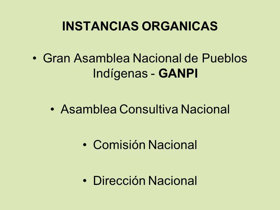 INSTANCIAS ORGANICAS Gran Asamblea Nacional de Pueblos Indígenas - GANPI Asamblea Consultiva Nacional Comisión Nacional Dirección Nacional