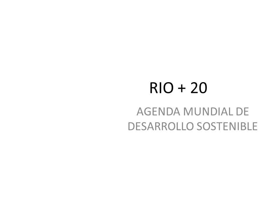 AGENDA MUNDIAL DE DESARROLLO SOSTENIBLE RIO + 20