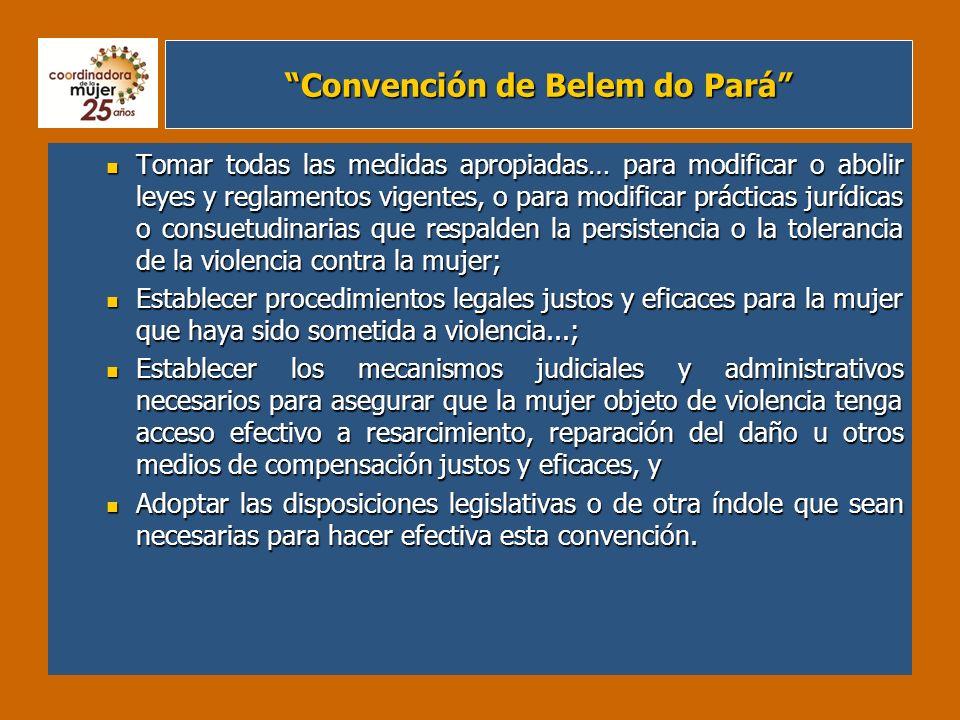 Convención de Belem do Pará Tomar todas las medidas apropiadas… para modificar o abolir leyes y reglamentos vigentes, o para modificar prácticas juríd