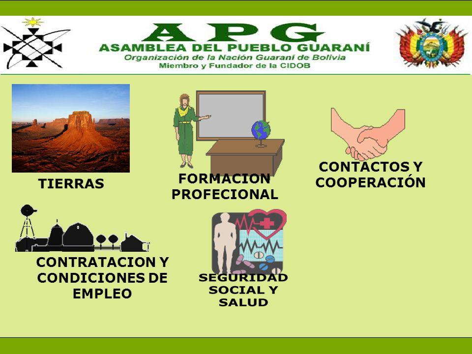 CONTRATACION Y CONDICIONES DE EMPLEO FORMACION PROFECIONAL CONTACTOS Y COOPERACIÓN