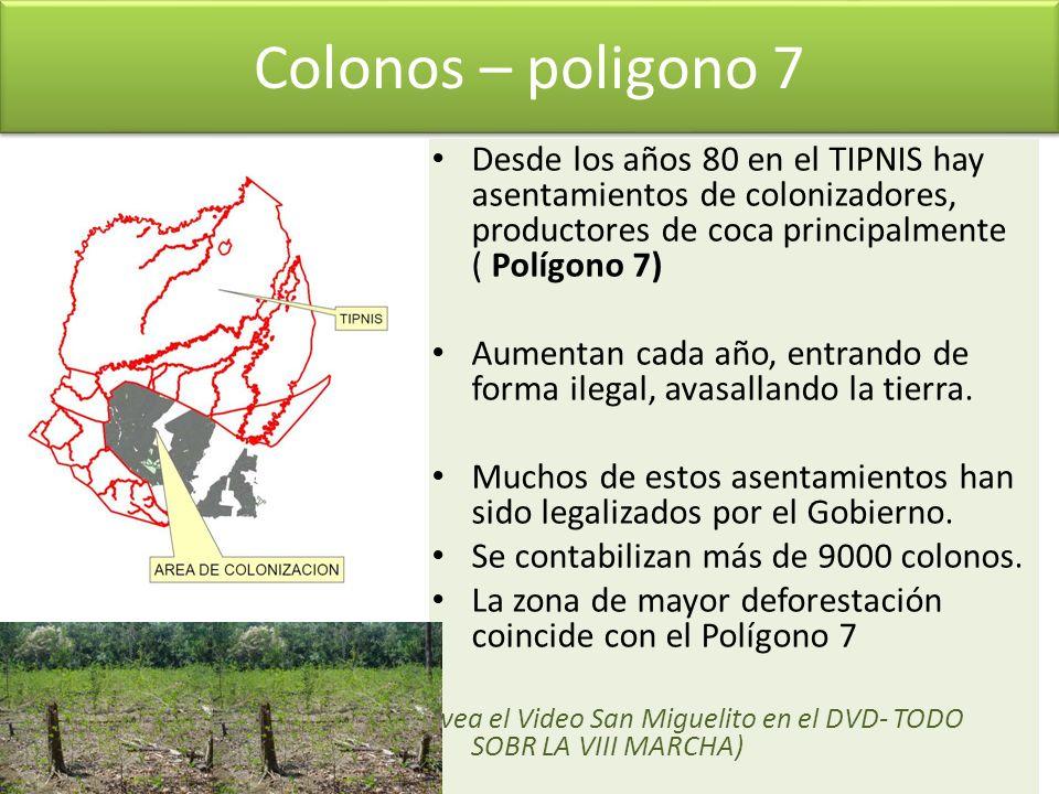 Colonos – poligono 7 Desde los años 80 en el TIPNIS hay asentamientos de colonizadores, productores de coca principalmente ( Polígono 7) Aumentan cada