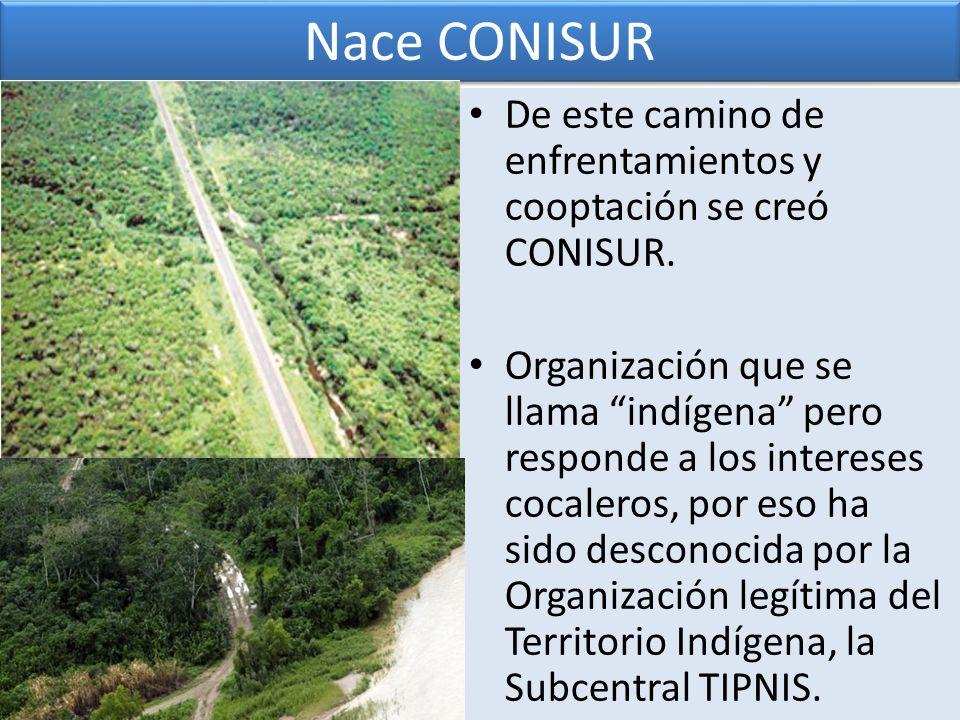 De este camino de enfrentamientos y cooptación se creó CONISUR. Organización que se llama indígena pero responde a los intereses cocaleros, por eso ha