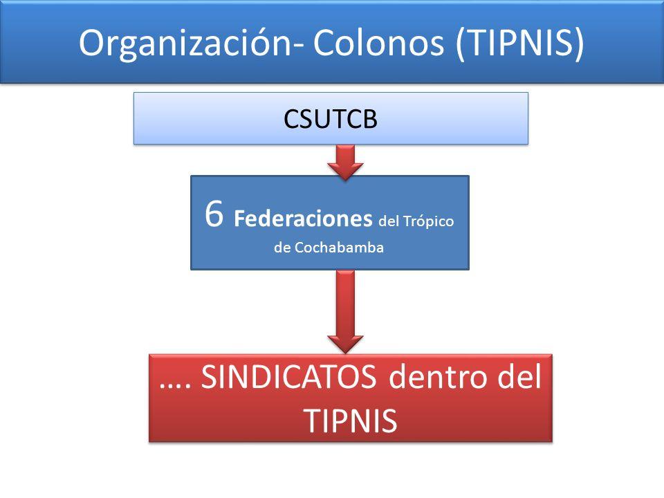 Organización- Colonos (TIPNIS) …. SINDICATOS dentro del TIPNIS 6 Federaciones del Trópico de Cochabamba CSUTCB