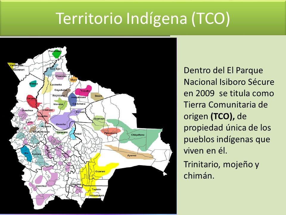 Territorio Indígena (TCO) Dentro del El Parque Nacional Isiboro Sécure en 2009 se titula como Tierra Comunitaria de origen (TCO), de propiedad única d
