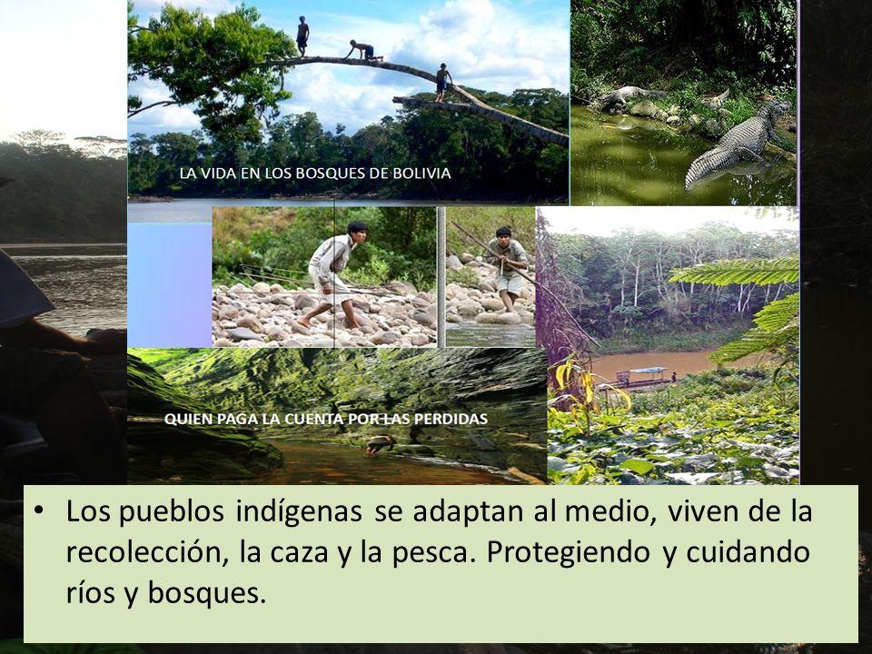 Los pueblos indígenas se adaptan al medio, viven de la recolección, la caza y la pesca. Protegiendo y cuidando ríos y bosques.