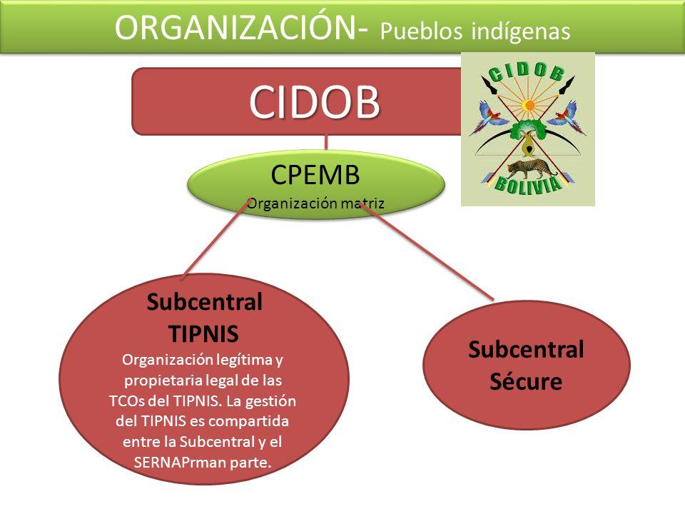 Subcentral TIPNIS Organización legítima y propietaria legal de las TCOs del TIPNIS. La gestión del TIPNIS es compartida entre la Subcentral y el SERNA