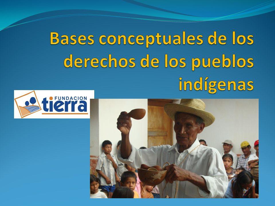 1.Indígena. indígena es el originario de un determinado pueblo o país.