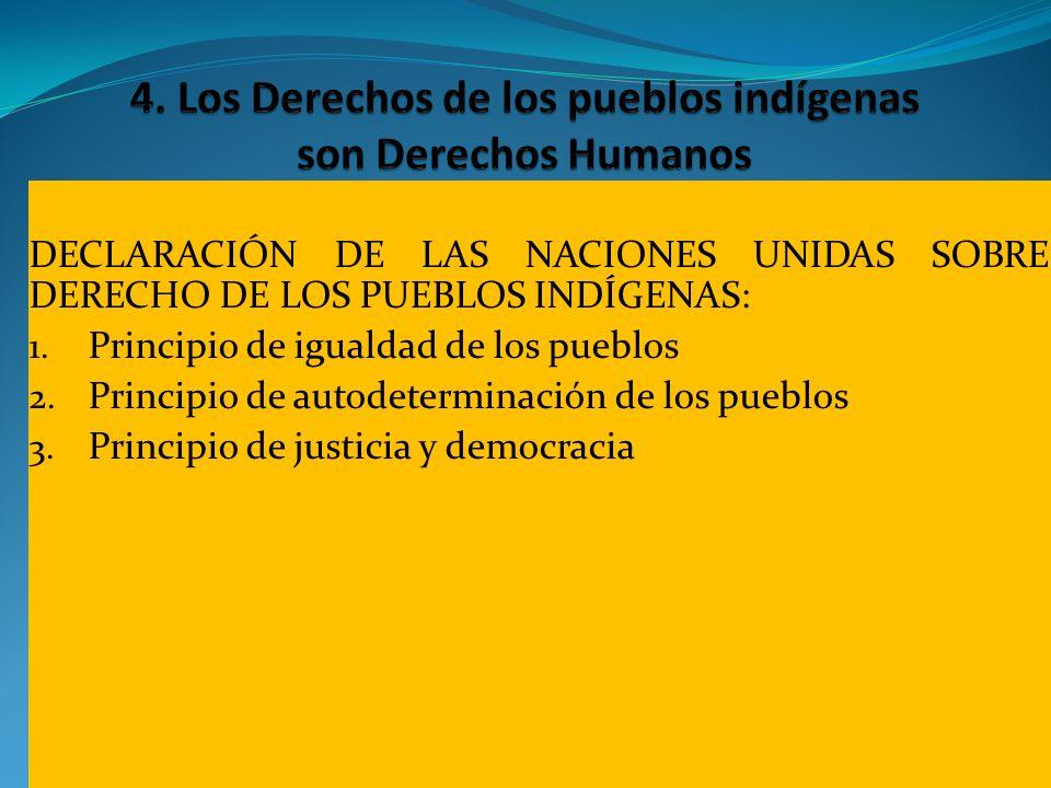 DECLARACIÓN DE LAS NACIONES UNIDAS SOBRE DERECHO DE LOS PUEBLOS INDÍGENAS: 1. Principio de igualdad de los pueblos 2. Principio de autodeterminación d