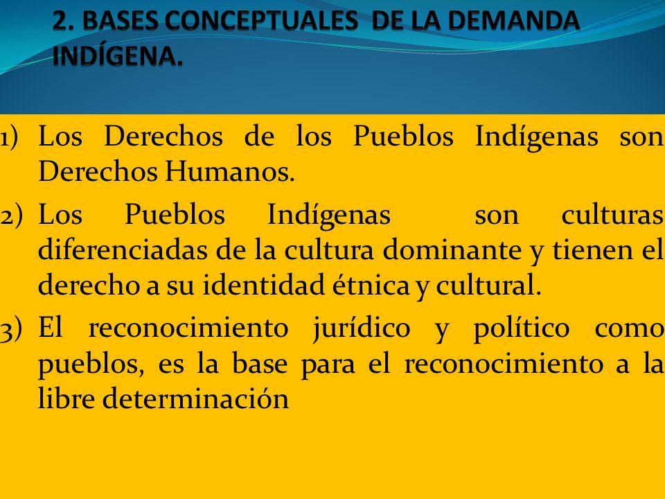 1) Los Derechos de los Pueblos Indígenas son Derechos Humanos. 2) Los Pueblos Indígenas son culturas diferenciadas de la cultura dominante y tienen el