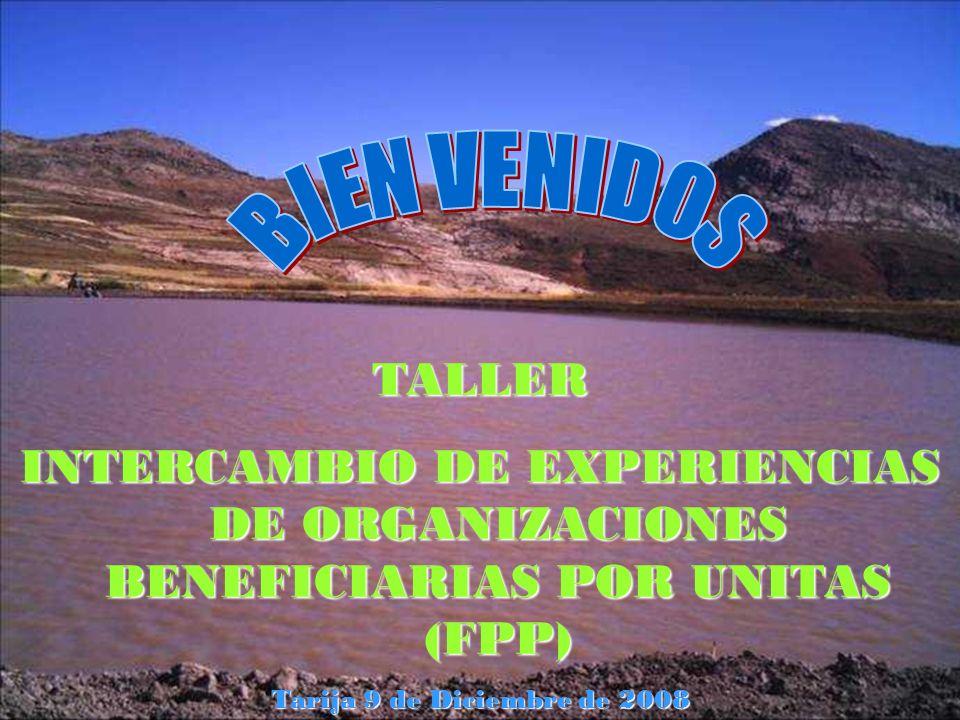 TALLER INTERCAMBIO DE EXPERIENCIAS DE ORGANIZACIONES BENEFICIARIAS POR UNITAS (FPP) Tarija 9 de Diciembre de 2008