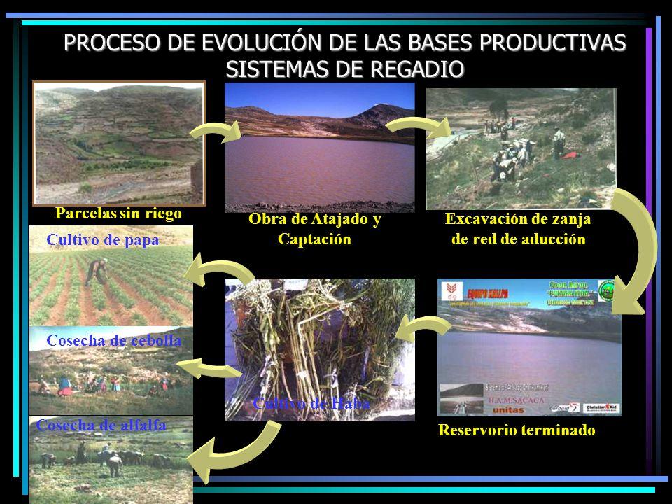 PROCESO DE EVOLUCIÓN DE LAS BASES PRODUCTIVAS SISTEMAS DE REGADIO Parcelas sin riego Obra de Atajado y Captación Excavación de zanja de red de aducció