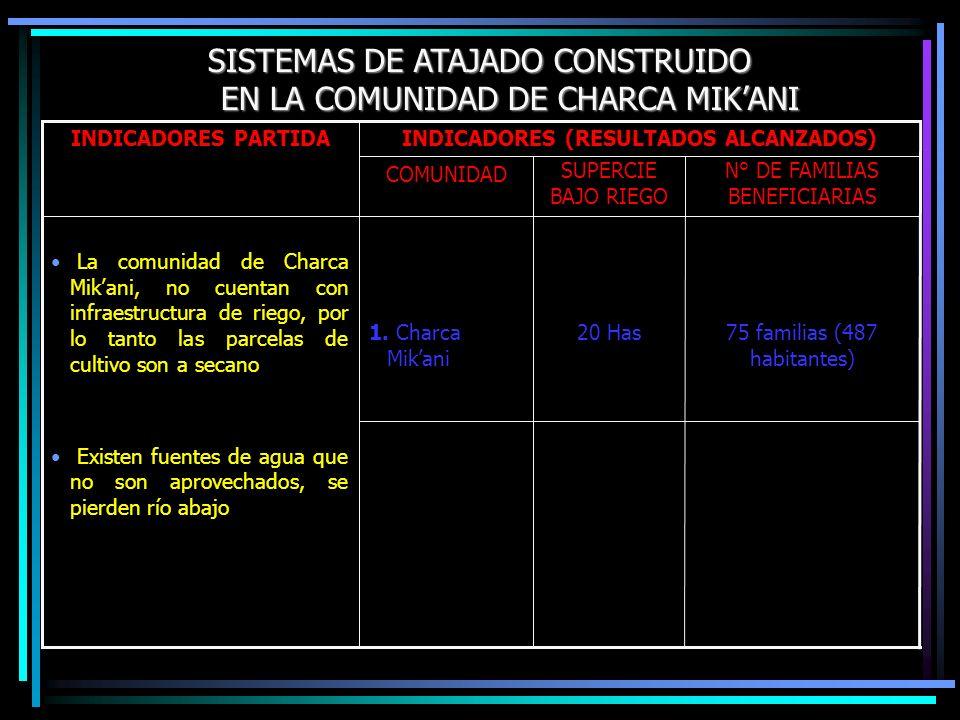 SISTEMAS DE ATAJADO CONSTRUIDO EN LA COMUNIDAD DE CHARCA MIKANI 75 familias (487 habitantes) 20 Has1. Charca Mikani N° DE FAMILIAS BENEFICIARIAS SUPER