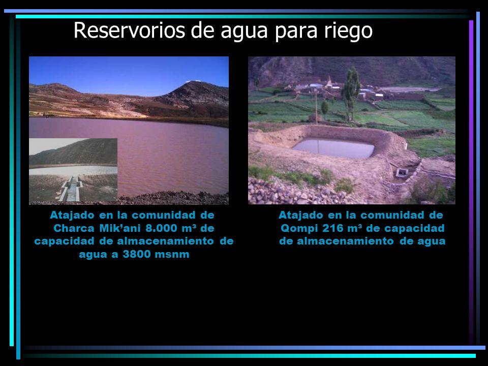 Reservorios de agua para riego Atajado en la comunidad de Charca Mikani 8.000 m³ de capacidad de almacenamiento de agua a 3800 msnm Atajado en la comu