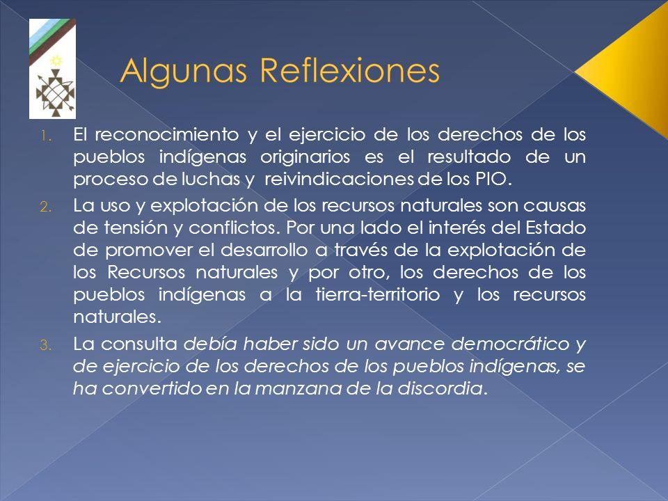 1. El reconocimiento y el ejercicio de los derechos de los pueblos indígenas originarios es el resultado de un proceso de luchas y reivindicaciones de