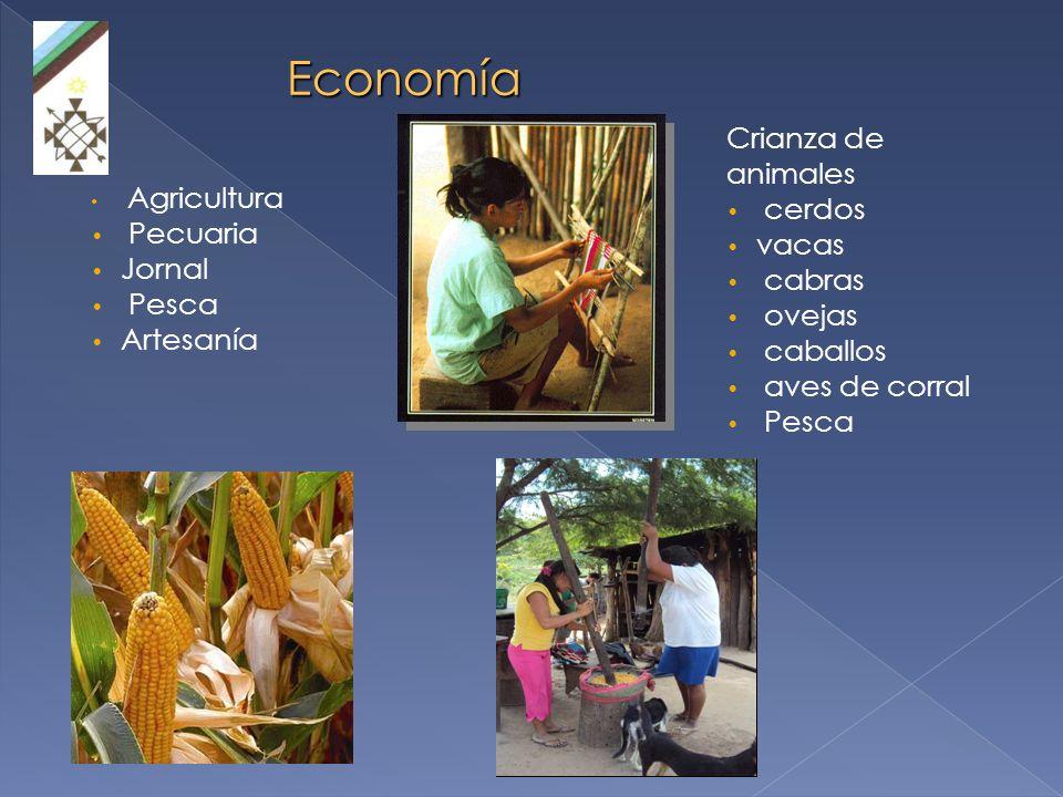 Asamblea del Pueblo Guaraní Piset, RRNN y MA, Género y comunicación