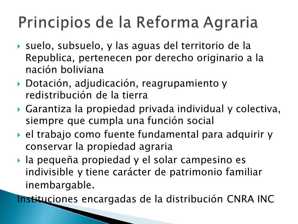 Anarquía en la dotación y adjudicación de tierras por el CNRA y el INC.