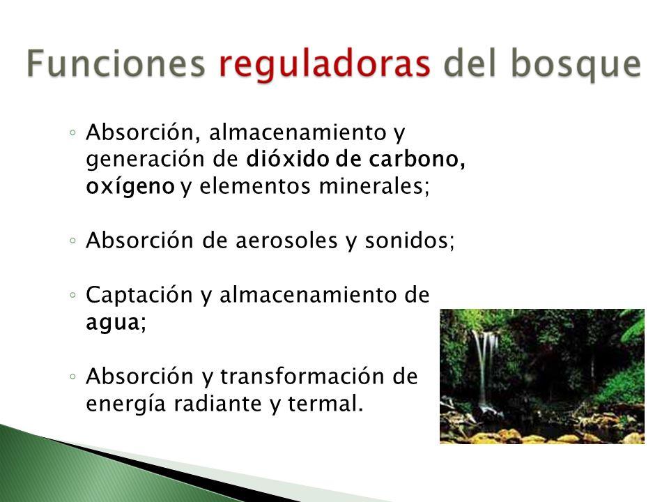 Absorción, almacenamiento y generación de dióxido de carbono, oxígeno y elementos minerales; Absorción de aerosoles y sonidos; Captación y almacenamie