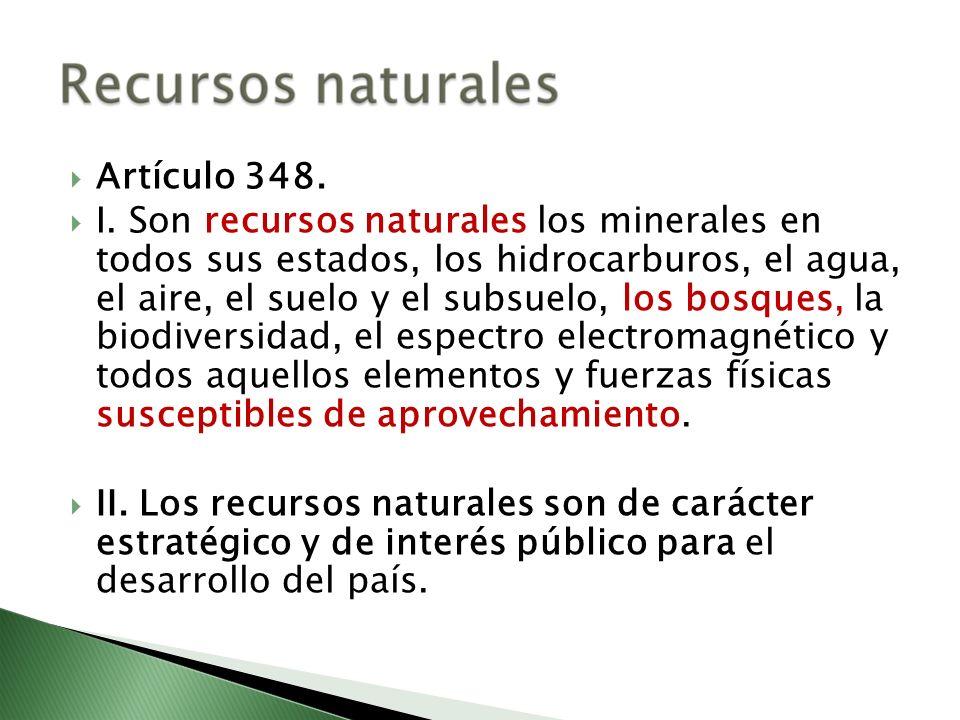 Artículo 348. I. Son recursos naturales los minerales en todos sus estados, los hidrocarburos, el agua, el aire, el suelo y el subsuelo, los bosques,