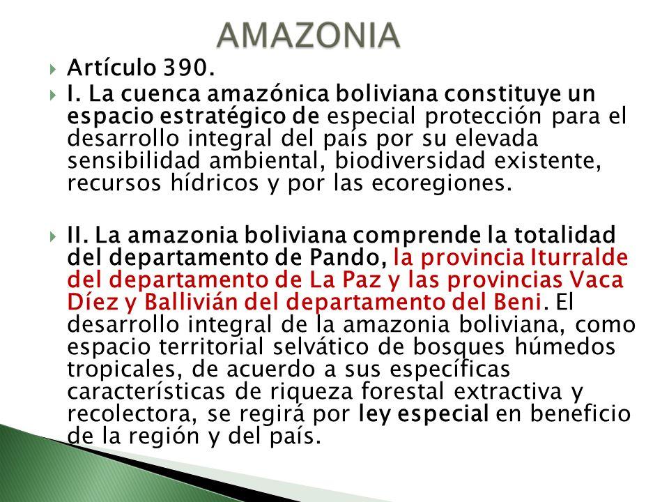 Artículo 390. I. La cuenca amazónica boliviana constituye un espacio estratégico de especial protección para el desarrollo integral del país por su el