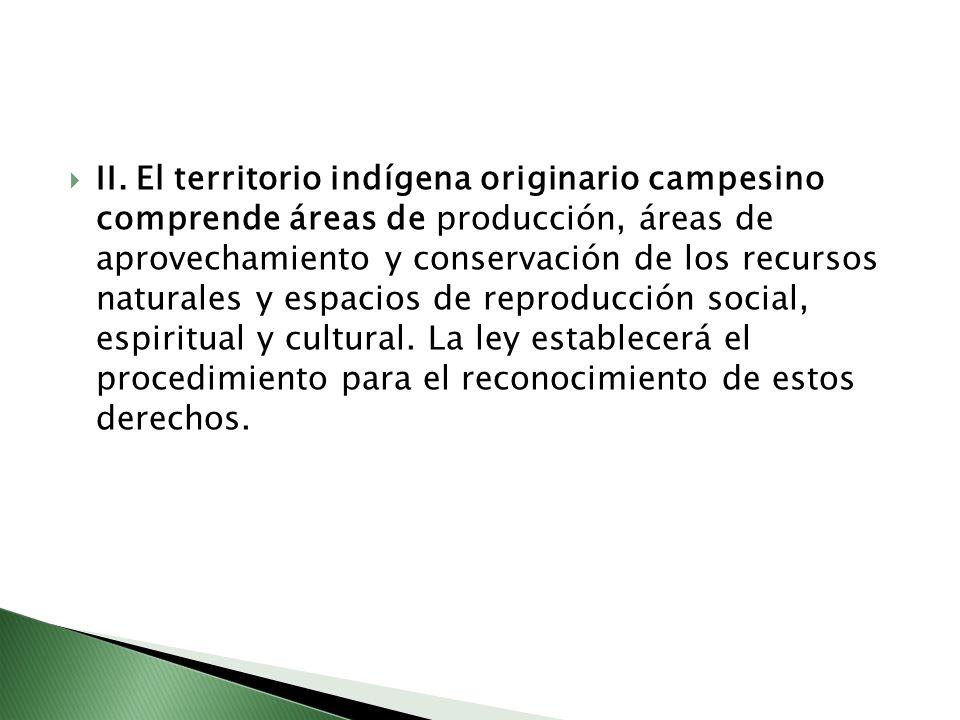 II. El territorio indígena originario campesino comprende áreas de producción, áreas de aprovechamiento y conservación de los recursos naturales y esp