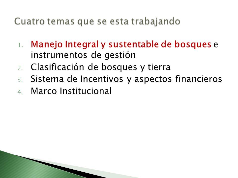 1. Manejo Integral y sustentable de bosques e instrumentos de gestión 2. Clasificación de bosques y tierra 3. Sistema de Incentivos y aspectos financi