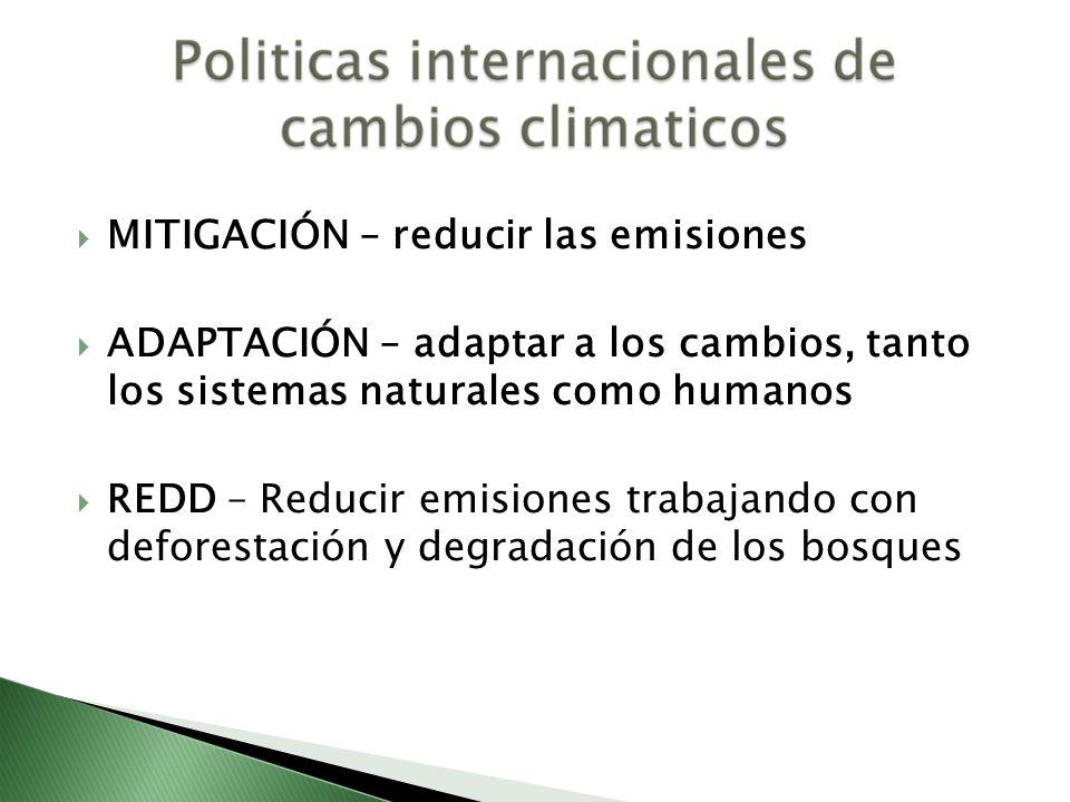 MITIGACIÓN – reducir las emisiones ADAPTACIÓN – adaptar a los cambios, tanto los sistemas naturales como humanos REDD – Reducir emisiones trabajando c