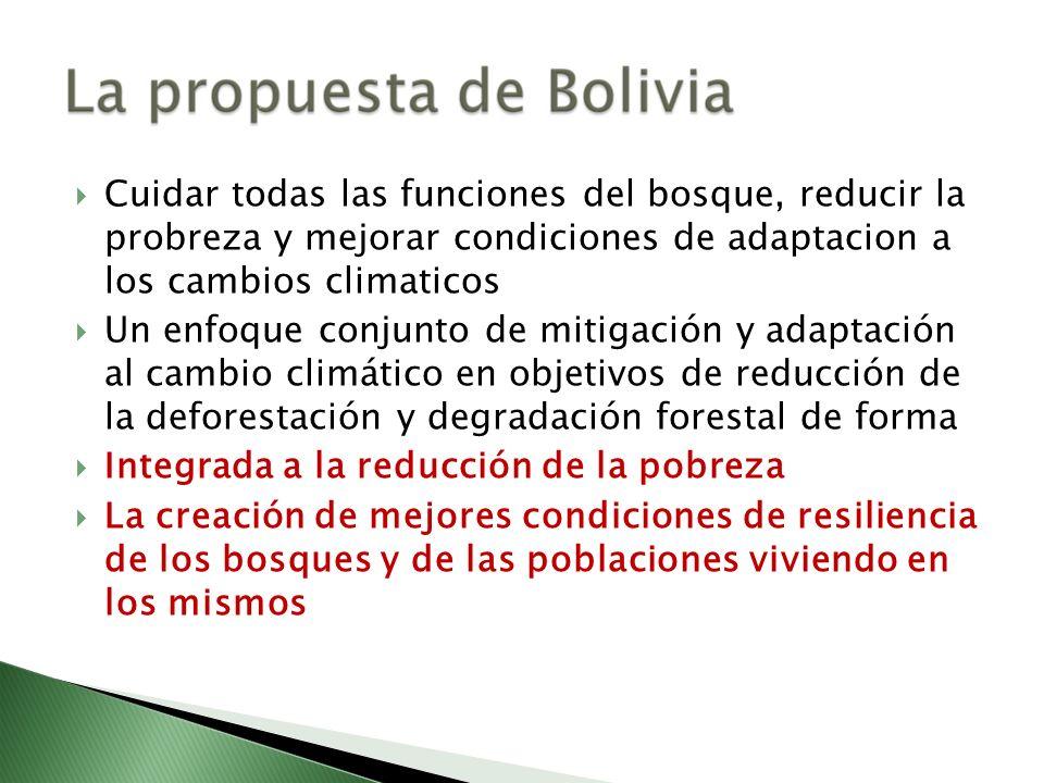 Cuidar todas las funciones del bosque, reducir la probreza y mejorar condiciones de adaptacion a los cambios climaticos Un enfoque conjunto de mitigac