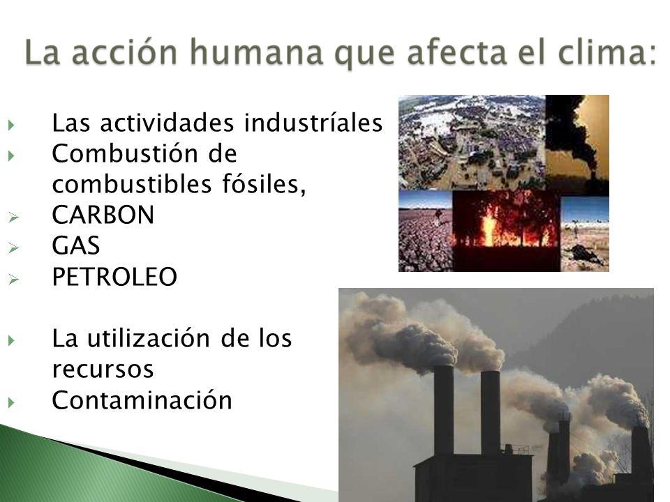 Las actividades industríales Combustión de combustibles fósiles, CARBON GAS PETROLEO La utilización de los recursos Contaminación