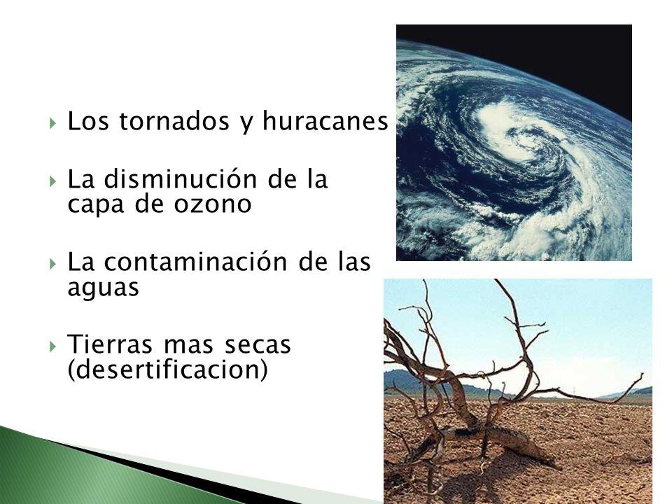 Los tornados y huracanes La disminución de la capa de ozono La contaminación de las aguas Tierras mas secas (desertificacion)