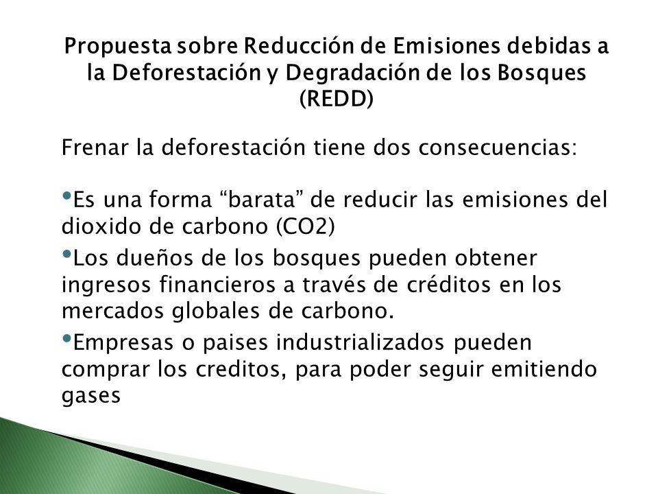 Propuesta sobre Reducción de Emisiones debidas a la Deforestación y Degradación de los Bosques (REDD) Frenar la deforestación tiene dos consecuencias:
