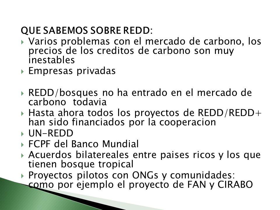 QUE SABEMOS SOBRE REDD: Varios problemas con el mercado de carbono, los precios de los creditos de carbono son muy inestables Empresas privadas REDD/b