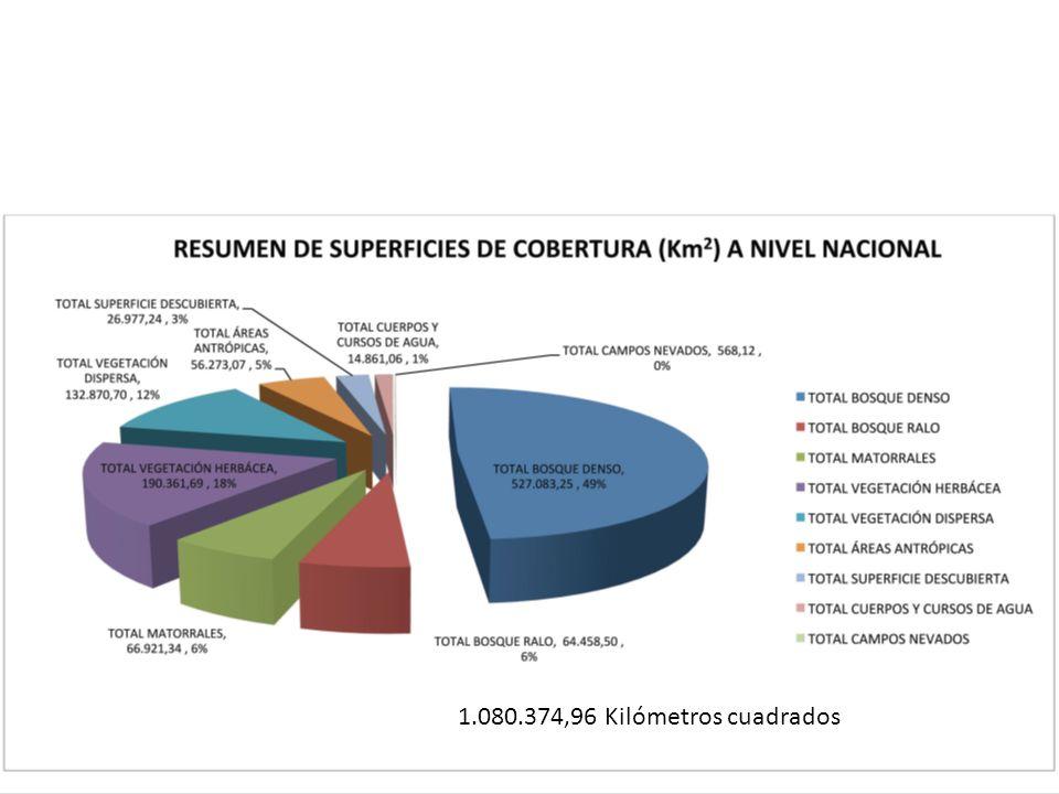 DepartamentoSuperficie intervenidaSuperficie redistribuida Beni1.446.949414.189 Chuquisaca393.79287.565 Cochabamba30.9792.654 La Paz872.45243.650 Oruro503.337499.316 Pando3.934.9681.293.008 Potosí493.664494.854 Santa Cruz2.892.7431.040.658 Tarija199.58869.747 Total general10.768.4723.945.641 Organización SocialSuperficie% CSUTCB-FNMCBS-MST1.105.038 94% CSCB-FNMCBS52.029 4% CIDOB21.917 2% Otros/adjudicaciones2.466 0% Total1.181.451 100% REDISTRIBUSION DE LA TIERRA (Fuente Juan Carlos Rojas)