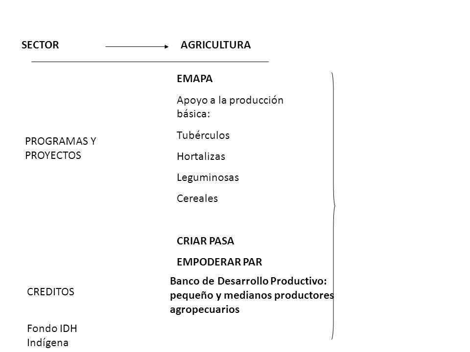 SECTORAGRICULTURA PROGRAMAS Y PROYECTOS EMAPA Apoyo a la producción básica: Tubérculos Hortalizas Leguminosas Cereales CRIAR PASA EMPODERAR PAR CREDIT