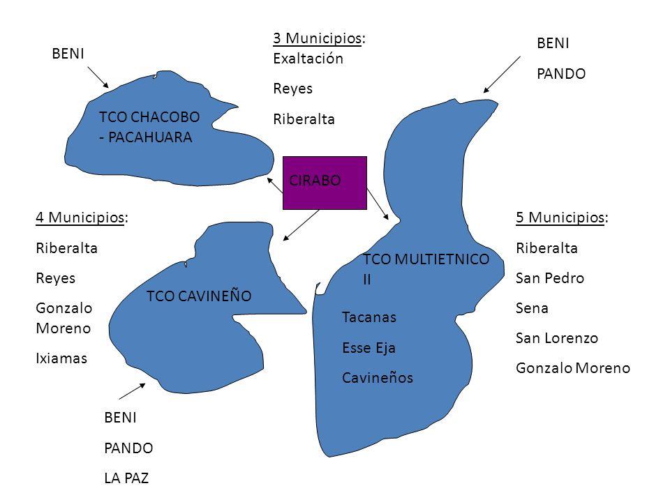 TCO CHACOBO - PACAHUARA TCO CAVINEÑO TCO MULTIETNICO II Tacanas Esse Eja Cavineños 3 Municipios: Exaltación Reyes Riberalta 4 Municipios: Riberalta Re