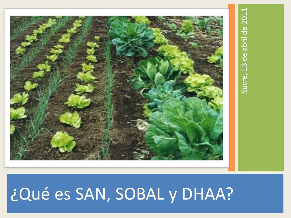 ¿Qué es SAN, SOBAL y DHAA Sucre, 13 de abril de 2011