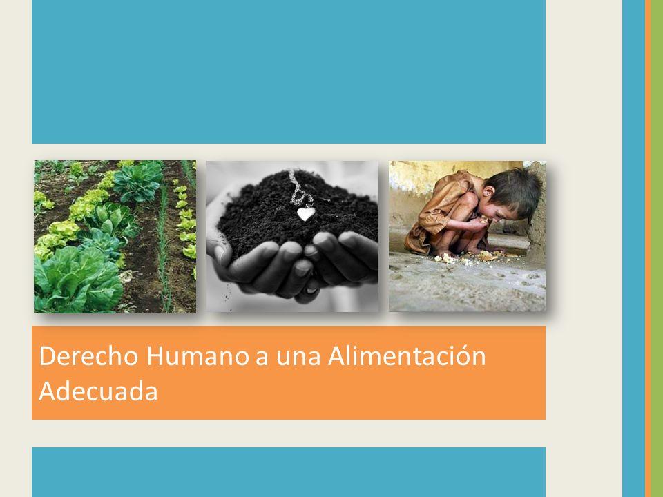 Derecho Humano a una Alimentación Adecuada