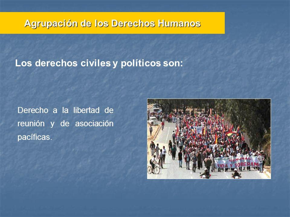 Los derechos civiles y políticos son: Derecho a la libertad de reunión y de asociación pacíficas. Agrupación de los Derechos Humanos