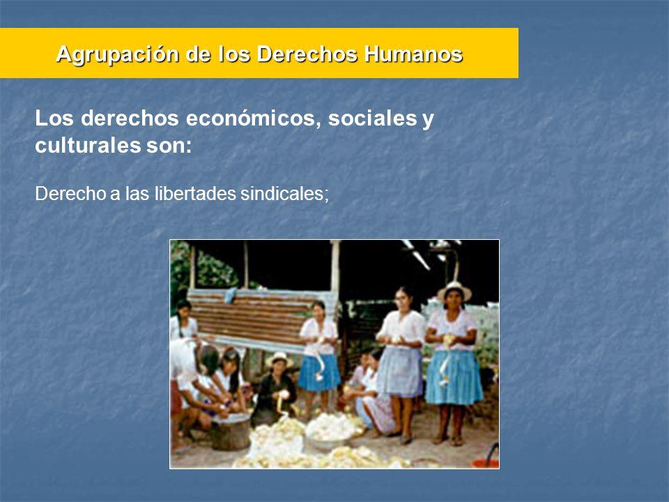 Derecho a las libertades sindicales; Agrupación de los Derechos Humanos Los derechos económicos, sociales y culturales son: