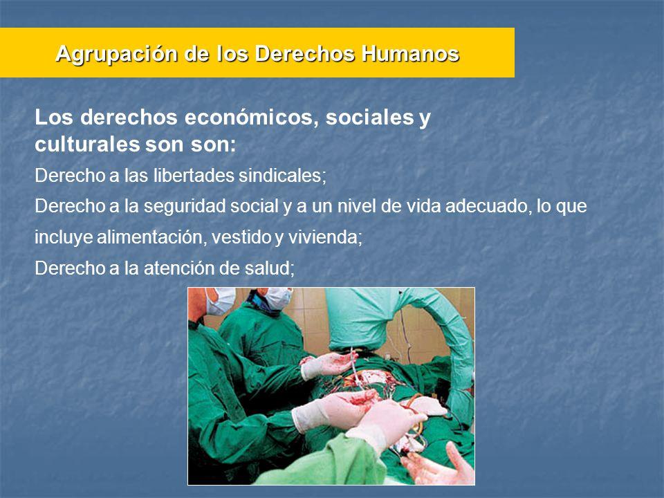 Derecho a las libertades sindicales; Derecho a la seguridad social y a un nivel de vida adecuado, lo que incluye alimentación, vestido y vivienda; Der